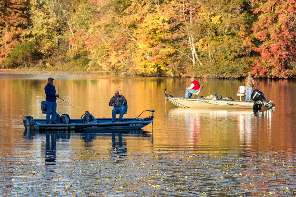 10K Trout Stocked In Maryland Waterways